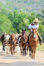 Mexican Cowboy leading horses for trail ride