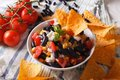 Mexican cuisine: tasty salsa and corn chips nachos close-up. Hor Royalty Free Stock Photo