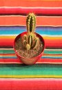 Mexican fiesta poncho rug with cactus traditional in bright colors and background copy space Stock Photo