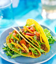 Mexican food beef tacos hard shell with cheese lettuce and tomatoes shot with selective focus Royalty Free Stock Photo