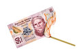 Mexican peso burn fifty bill being burned by a lid match Royalty Free Stock Images