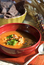 Mexican soup Royalty Free Stock Photography