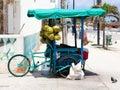 Mexican  3-wheel cargo bike street vendor in Progresso Yucatan Royalty Free Stock Photo