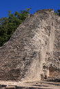 Mexico pyramid at  Coba Royalty Free Stock Image