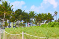 Miami Beach entrance with palm trees Florida US Royalty Free Stock Photo