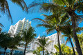 Miami beach palm trees and condos in Royalty Free Stock Image