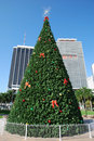 Miami Christmas Tree Stock Images