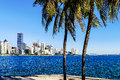 Miami downtown skyline in daytime with biscayne bay Stock Images