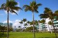 Miami south Beach palm trees park Florida Royalty Free Stock Photo