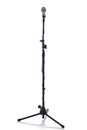 Mic stand full height Royalty Free Stock Photo