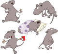 Mice collection set of grey lovely nice Royalty Free Stock Images