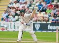Michael Hussey Royalty Free Stock Photo
