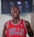 Michael Jordan Royalty Free Stock Images