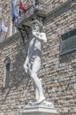 Michelangelo's David statue in Florence, Italy Royalty Free Stock Photos