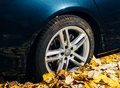 Michelin Pilot Alpin Car in autumn foliage tire Royalty Free Stock Photo