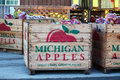 Michigan apples red filled southwest orchards in a bumper crop this year Royalty Free Stock Photos