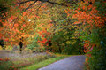 Michigan fall Royalty Free Stock Photography