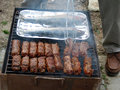 Mici and fish Royalty Free Stock Image