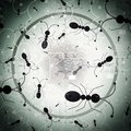 Micro Robotics - Microbots - Swarm Intelligence - Abstract Illustration Royalty Free Stock Photo