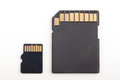 Micro sd card and adapter Royalty Free Stock Image