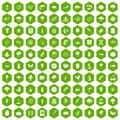 100 microbiology icons hexagon green