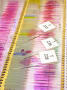 Microscope slides Stock Image