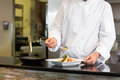 Mid section of a chef garnishing food in kitchen Royalty Free Stock Photo