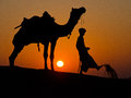 Middel east bedouin nomad and camel in the Royalty Free Stock Images