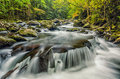 Middle Prong of the Little River, Great Smoky Mountains Royalty Free Stock Photo