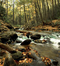 Middle Prong Trail creek Stock Photography