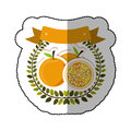 Middle shadow sticker colorful with olive crown with oranges set Royalty Free Stock Photo