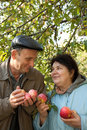 Middleaged man and woman stand with red apples Royalty Free Stock Photos