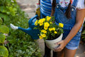 Midsection of senior woman and granddaughter holding watering can and yellow flower pot Royalty Free Stock Photo