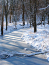 Midwest Winter Scenery Royalty Free Stock Photography