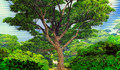 Mighty tree in the park Royalty Free Stock Images