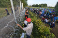 Migrants from Middle East waiting at hungarian border