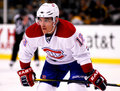 Mike Cammalleri Royalty Free Stock Image