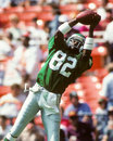 Mike quick philadelphia eagles Fotografie Stock