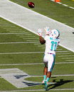 Mike wallace miami dolphins wr attempts to catch a pass against the new england patriots Stock Image