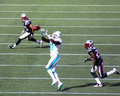 Mike wallace miami dolphins wr attempts to catch a pass against the new england patriots Royalty Free Stock Photo