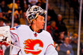 Mikka Kiprusoff Calgary Flames Royalty Free Stock Images