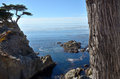 Mile drive a cove along carmel s famous Royalty Free Stock Photography