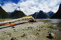 Milford sound Royalty Free Stock Photo