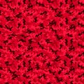 Military camo seamless pattern. Camouflage backdrop in red.