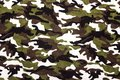 Military camouflage cloth pattern background. Royalty Free Stock Photo
