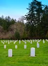 Military cemetery historic fort worden Royalty Free Stock Photos