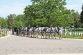 Military funeral at arlington national cemetary a with horses dragging the coffin Royalty Free Stock Photo