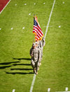 Military Presence at FSU Football Game Royalty Free Stock Photos