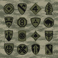 Military unit patch insignia set on green camouflage Royalty Free Stock Photo