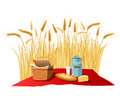 Milk, bread and cheese on wheat field Royalty Free Stock Photo